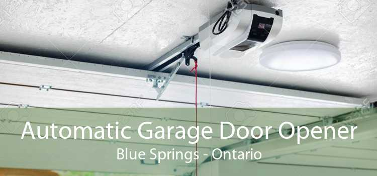 Automatic Garage Door Opener Blue Springs - Ontario