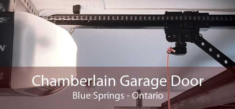 Chamberlain Garage Door Blue Springs - Ontario