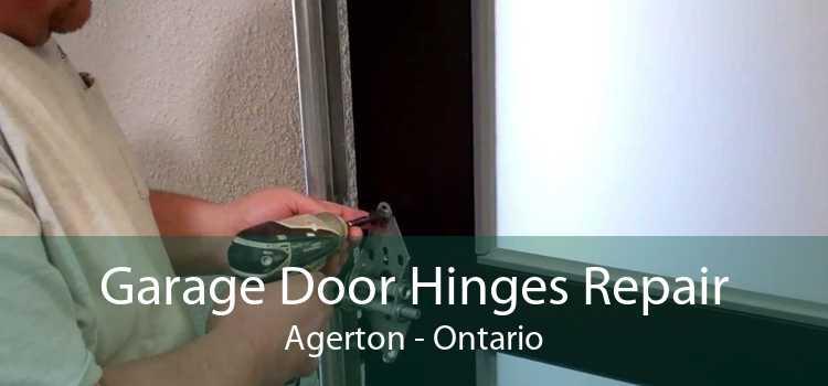 Garage Door Hinges Repair Agerton - Ontario