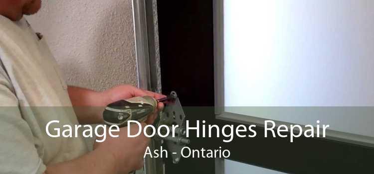 Garage Door Hinges Repair Ash - Ontario