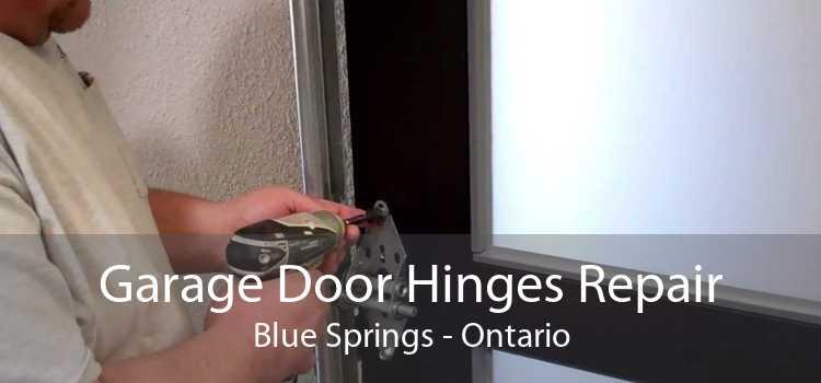 Garage Door Hinges Repair Blue Springs - Ontario