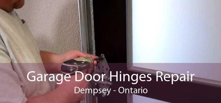 Garage Door Hinges Repair Dempsey - Ontario