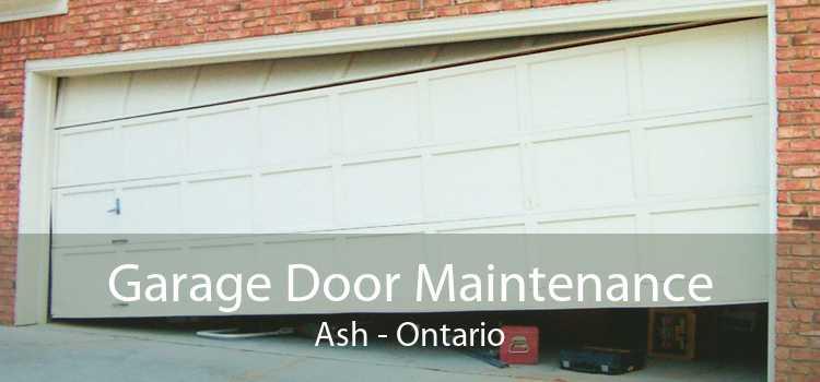 Garage Door Maintenance Ash - Ontario