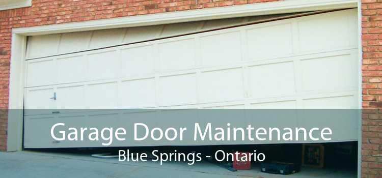 Garage Door Maintenance Blue Springs - Ontario