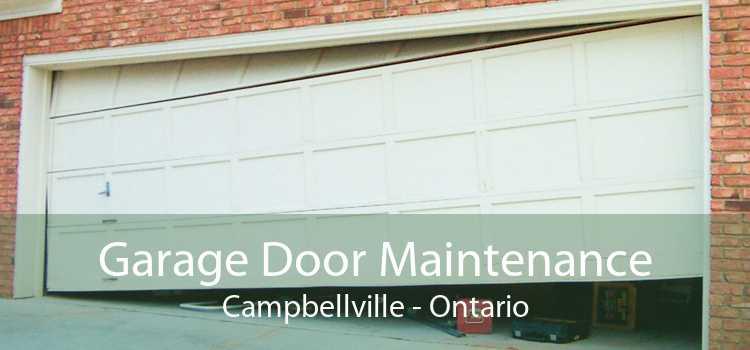 Garage Door Maintenance Campbellville - Ontario