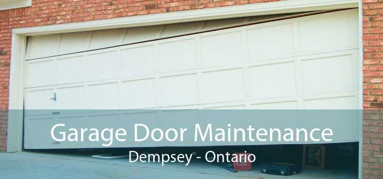 Garage Door Maintenance Dempsey - Ontario