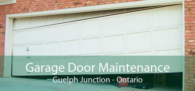 Garage Door Maintenance Guelph Junction - Ontario