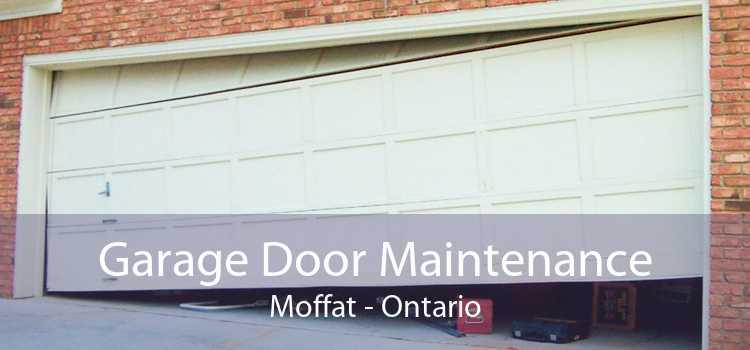 Garage Door Maintenance Moffat - Ontario