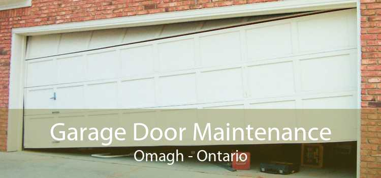 Garage Door Maintenance Omagh - Ontario