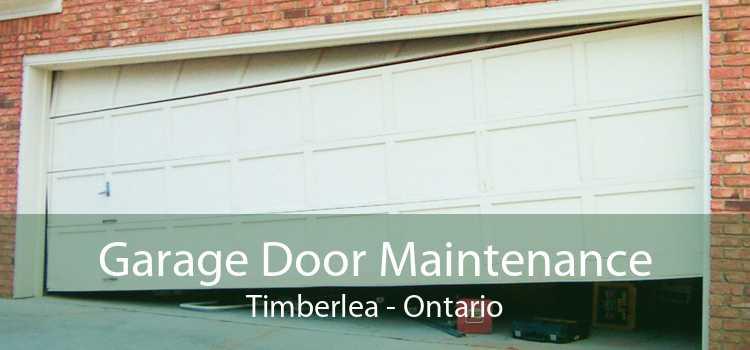 Garage Door Maintenance Timberlea - Ontario