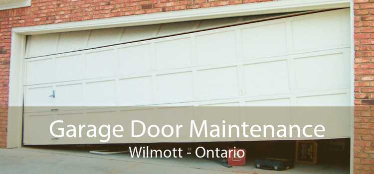 Garage Door Maintenance Wilmott - Ontario