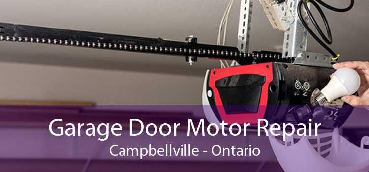 Garage Door Motor Repair Campbellville - Ontario