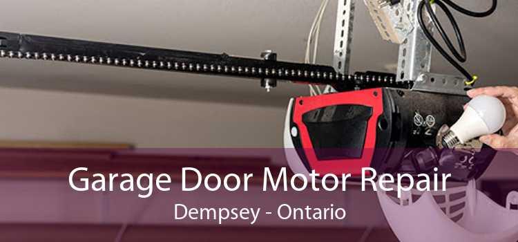 Garage Door Motor Repair Dempsey - Ontario