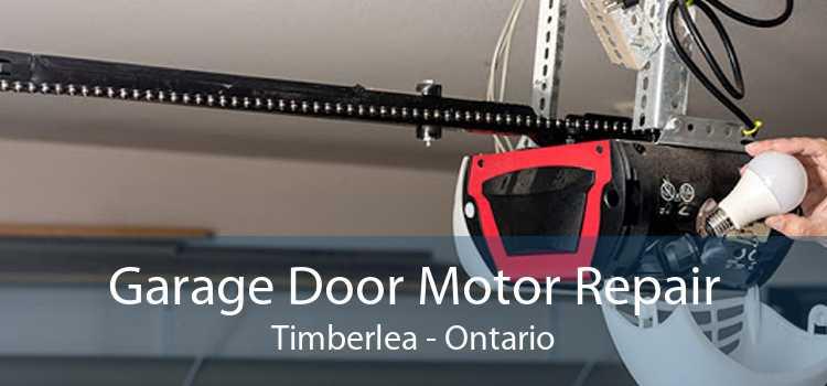 Garage Door Motor Repair Timberlea - Ontario