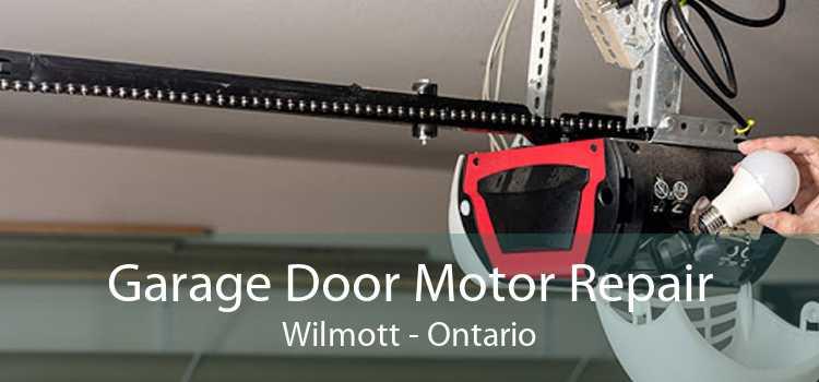 Garage Door Motor Repair Wilmott - Ontario