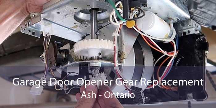 Garage Door Opener Gear Replacement Ash - Ontario
