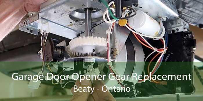 Garage Door Opener Gear Replacement Beaty - Ontario