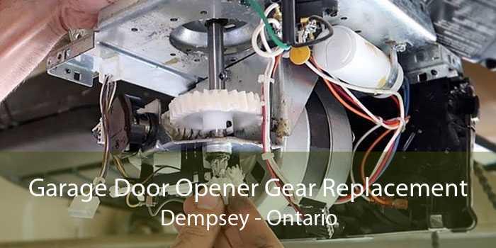 Garage Door Opener Gear Replacement Dempsey - Ontario