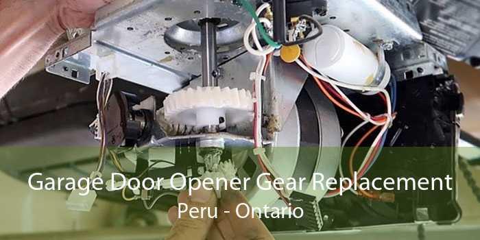 Garage Door Opener Gear Replacement Peru - Ontario