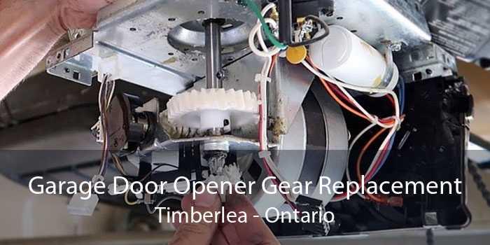 Garage Door Opener Gear Replacement Timberlea - Ontario