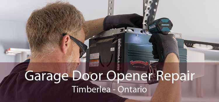 Garage Door Opener Repair Timberlea - Ontario