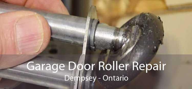 Garage Door Roller Repair Dempsey - Ontario