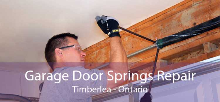 Garage Door Springs Repair Timberlea - Ontario