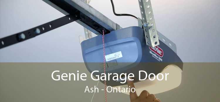 Genie Garage Door Ash - Ontario