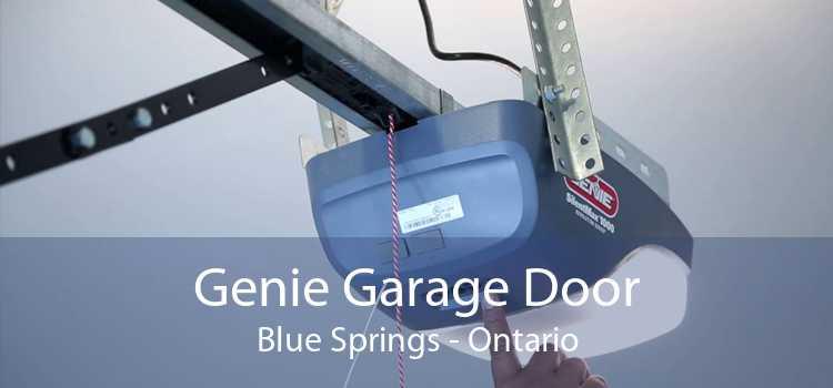 Genie Garage Door Blue Springs - Ontario