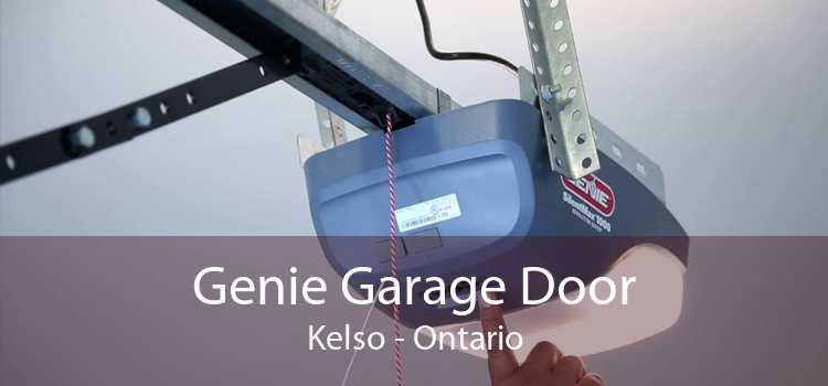 Genie Garage Door Kelso - Ontario