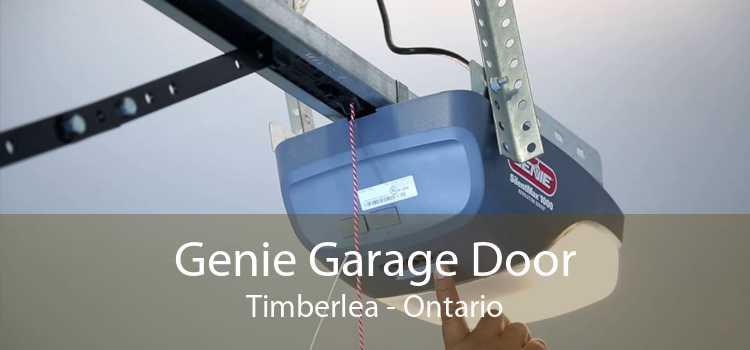 Genie Garage Door Timberlea - Ontario