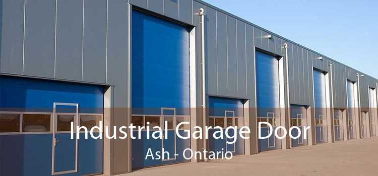 Industrial Garage Door Ash - Ontario