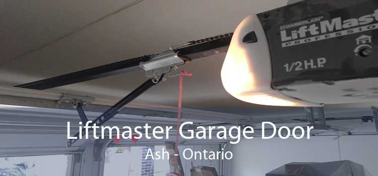 Liftmaster Garage Door Ash - Ontario