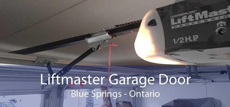 Liftmaster Garage Door Blue Springs - Ontario