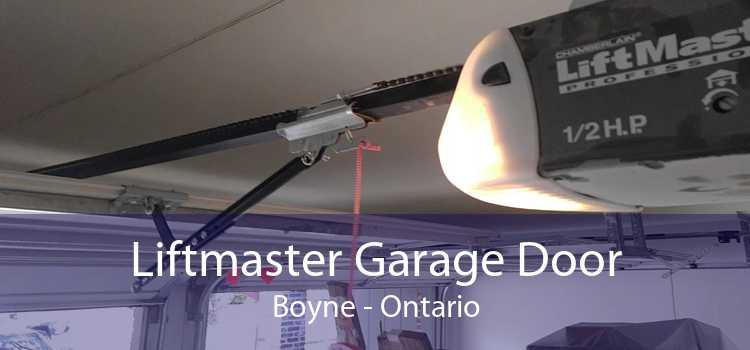 Liftmaster Garage Door Boyne - Ontario