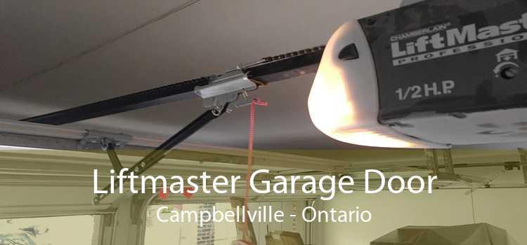 Liftmaster Garage Door Campbellville - Ontario