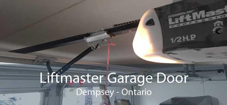 Liftmaster Garage Door Dempsey - Ontario