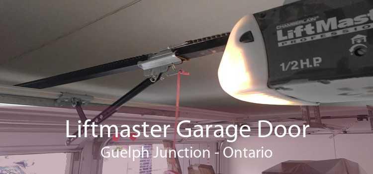 Liftmaster Garage Door Guelph Junction - Ontario
