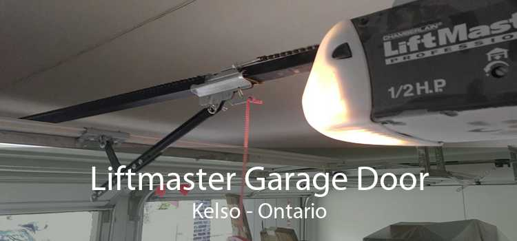 Liftmaster Garage Door Kelso - Ontario