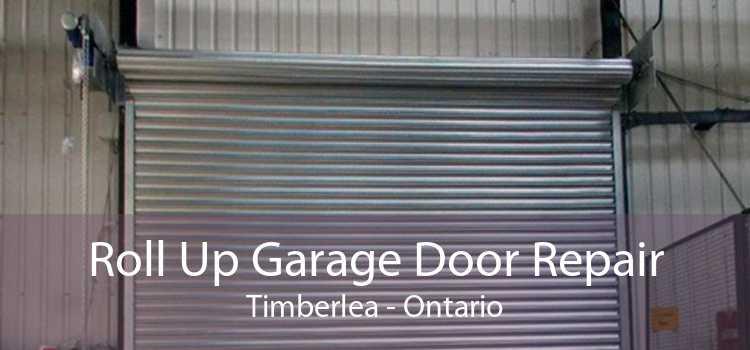 Roll Up Garage Door Repair Timberlea - Ontario
